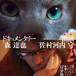 【アミストラはかく語りき】Vol.36 FAKE
